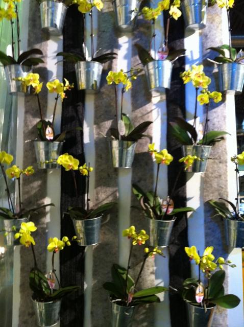 Salon d 39 habitat decor jardin france gary for Jardin ornement