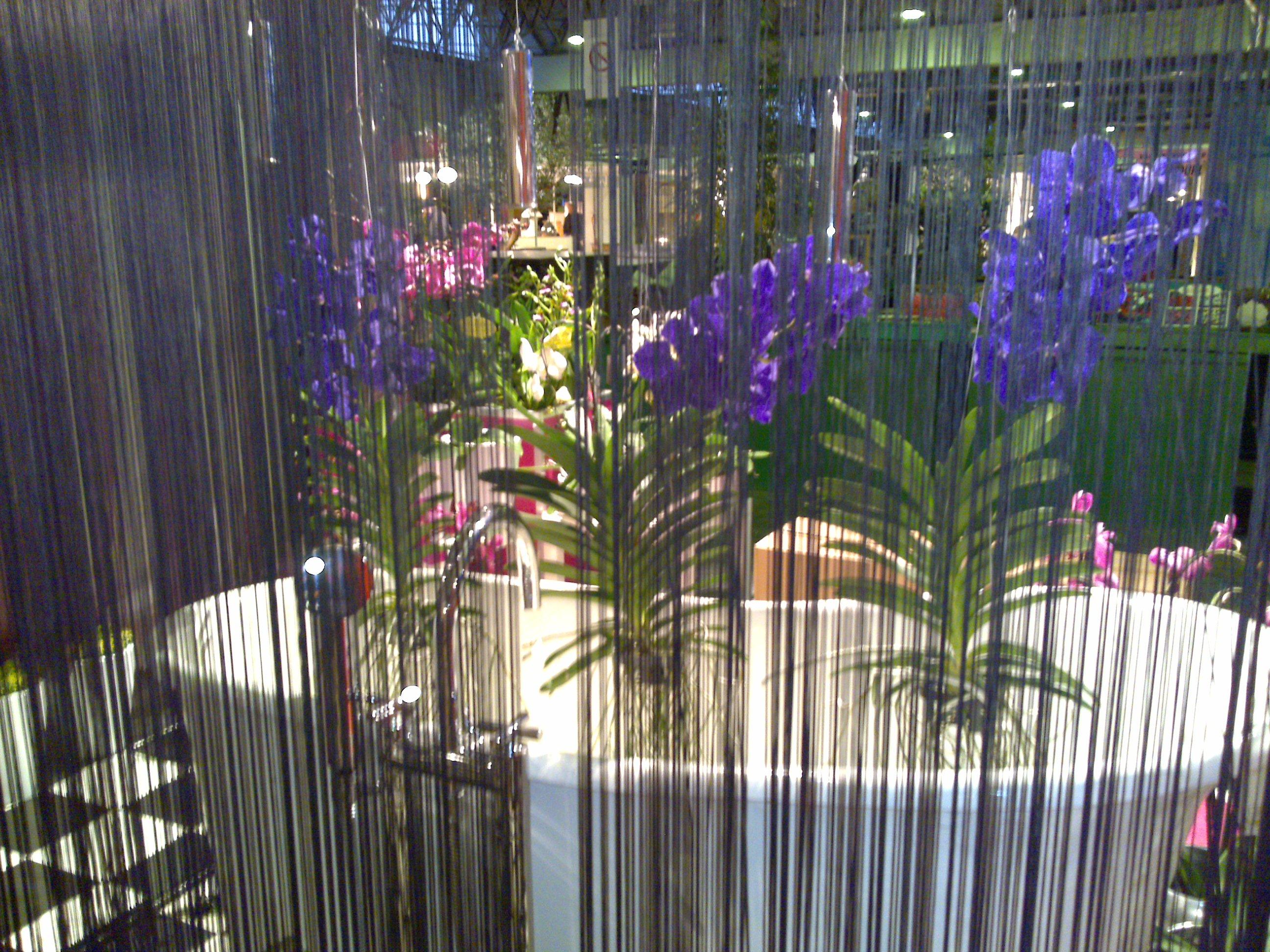 Vida Verde for Decor Jardin Nancy France Gary